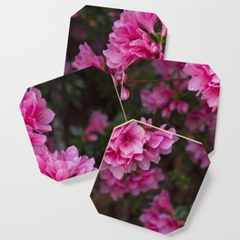 Pretty in Pink Coaster
