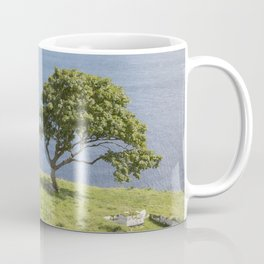 Rock and Tree, Murlough Beach; County Antrim; Northern Ireland Coffee Mug