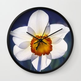 the genus of narcissus Wall Clock
