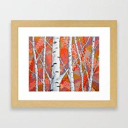 Sunset Sherbert Birch Forest by Mike Kraus - art birch aspen trees forests woods nature decoration Framed Art Print