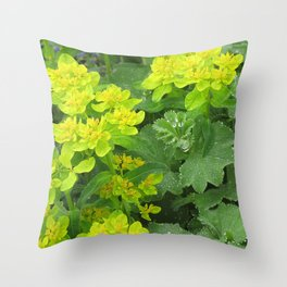 Euphorbia & Lady's Mantle Throw Pillow