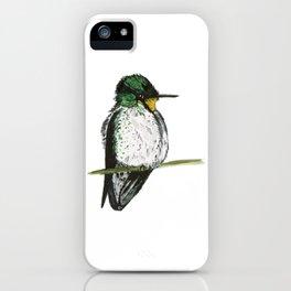 Juan Fernandez Firecrown iPhone Case