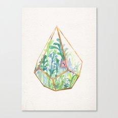 Terrarium II Canvas Print
