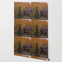 Blazing Country Wallpaper