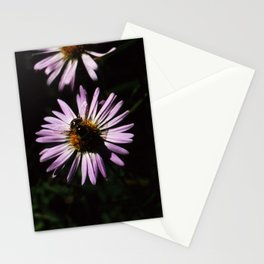 Bee on pink flower Stationery Cards