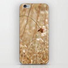 Flimsy iPhone & iPod Skin