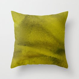 Relief Map 2 Throw Pillow