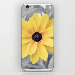 Yellow Grey Flower Photography, Yellow Gray Nature Floral Photography iPhone Skin