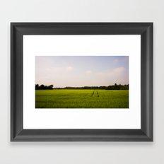 Corn 2 Framed Art Print