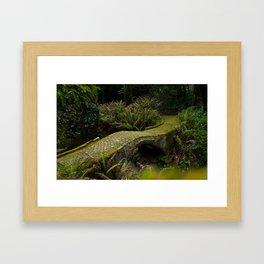 Pena's Bridge Framed Art Print