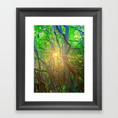Peeking Sun  Framed Art Print
