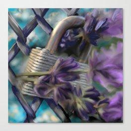 Secrets & Salvia (Against The Fence) Canvas Print