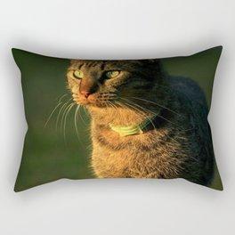 Kitty Cat Rectangular Pillow