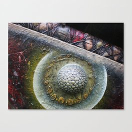 Cosmic Phenomenon Canvas Print