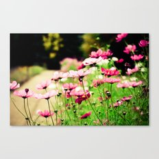 Light Hearted Canvas Print