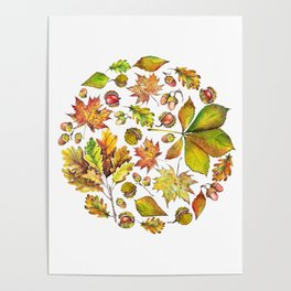 Autumn forest composition Poster