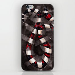 Striped Snake iPhone Skin