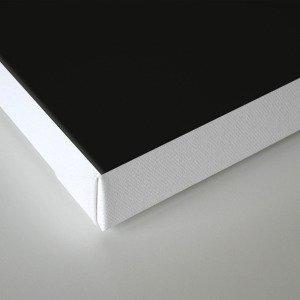 The future is female black-white Canvas Print