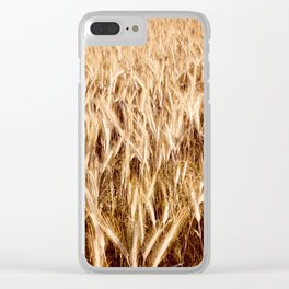 golden cereal grain ears on field Clear iPhone Case