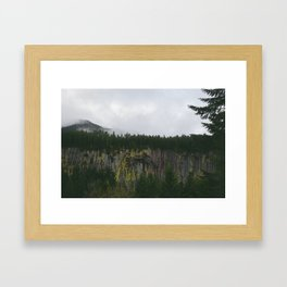 Landscape, Gifford-Pinchot national forest Washington Framed Art Print