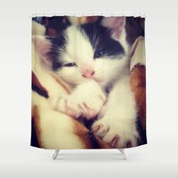 harley Shower Curtains featuring Harley by Louisa D