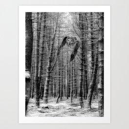 owl in the woods Art Print