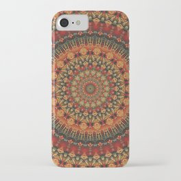 Mandala 563 iPhone Case