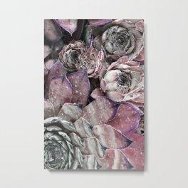 succulent pink Metal Print