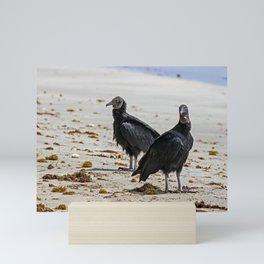 Black vultures on the beach Mini Art Print
