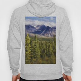 The Alaska Range Hoody