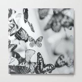 B&W Butterfly Metal Print