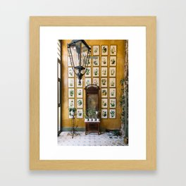 A Wall of Orchids, Merida, Mexico Framed Art Print