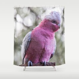 Galah Shower Curtain