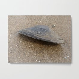 Don't Clam Up Metal Print