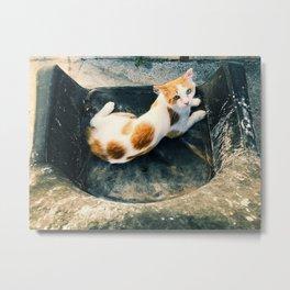 cat guardian Metal Print