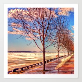 Bare Trees and Frozen Lake Art Print