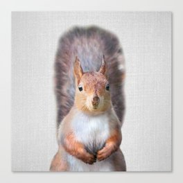 Squirrel - Colorful Canvas Print