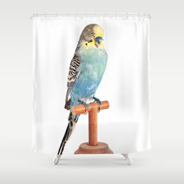 Parrot - Taxidermy Shower Curtain