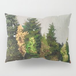 Upstate New York Gorges Pillow Sham