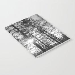 Winter Pine Forest 1 Notebook