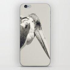 Marabou Stork iPhone & iPod Skin