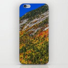 Foliage on the Mountain iPhone Skin