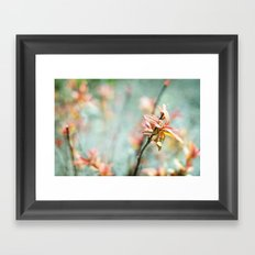 Color Bloom Framed Art Print