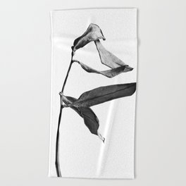 WABI SABI Dead Leaves. Beach Towel