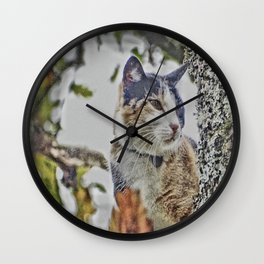 Cat in the Tree Wall Clock