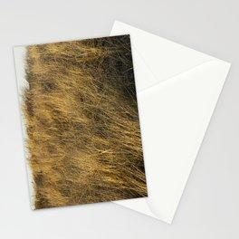 Montauk Grass Sand Dunes Stationery Cards