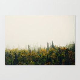 North of Wawa 01 Canvas Print