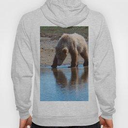 Grizzly Cub Drinking from Stream  Alaska Katmai National Park #Socety6 Hoody