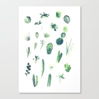 cacti Canvas Prints featuring Cacti by Veronica Tran
