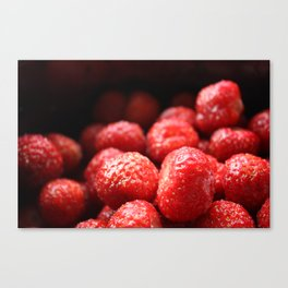 Sweet strawberries Canvas Print